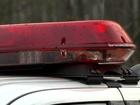 AZ child predators arrested before Halloween