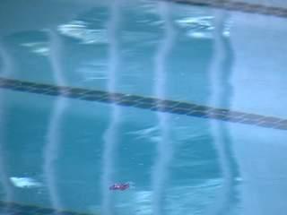 Vandals throw white paint into Phoenix pool