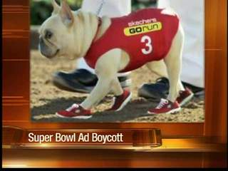 Controversial Super Bowl Ad with AZ ties