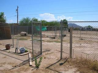 Queen_Creek_animal_abuse_case_20120629182752_JPG