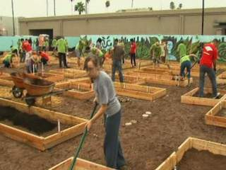 Volunteers_in_Mesa_garden_20120911074156_JPG