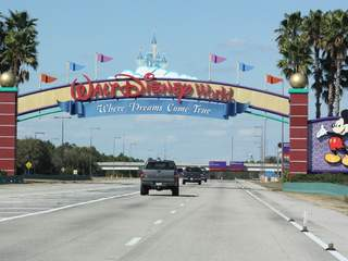 Disney World to allow dogs at some of its hotels