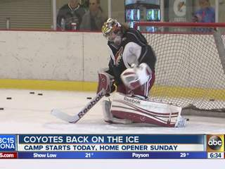 Phoenix Coyotes return to the ice today