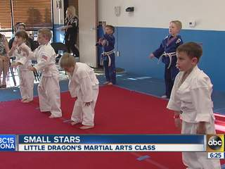 'Little Dragons' learn from martial arts