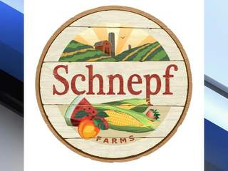 Schnepf Farms employee injured in hit-and-run