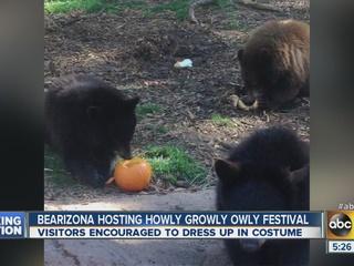 Bearizona hosts Howly Growly Owly