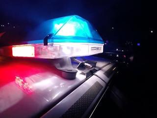 10 arrested after stolen shotgun investigation