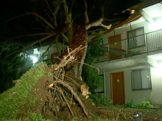 QUIZ: Dangers of monsoon winds, microbursts
