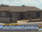 VIDEO: Peoria K-9 kicked by own officer