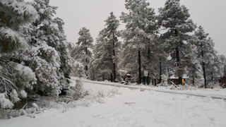 Winter wonderland in Northern Arizona