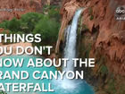 5 things you didn't know about Havasupai Falls