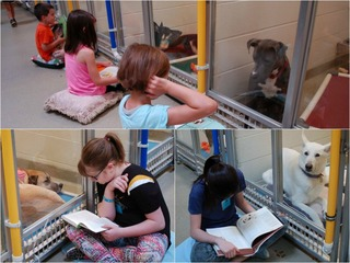 Kids practice reading to shy shelter dogs