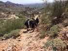 PHX FD help man down Piestewa Peak