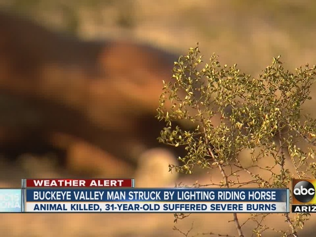 Man in critical condition, horse killed after lightning strike