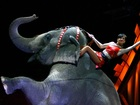 Ringling Bros. elephants to perform final show