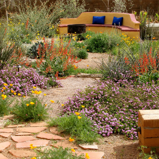 As You Gather Ideas For Your Design Visit One Of Many Phoenix Valley Xeriscape Demonstration Gardens And Inspiration