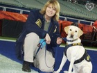 Retired ATF dog needs costly ACL surgery