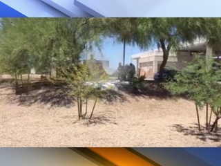 Man stung 100 times by swarm of bees in Peoria