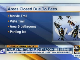 Mesa hiking area closed after deadly bee attack