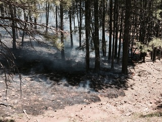Abandoned, unattended camp fires a problem