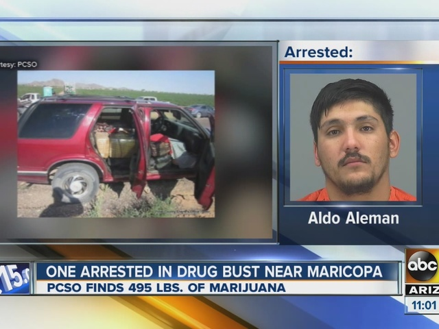 Man arrested in drug bust near Maricopa