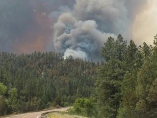 Firefighters keep Cedar Fire at bay