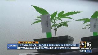 Legal pot in AZ one step closer