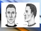 PD: PHX serial shooter using multiple vehicles