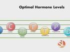 Balance your hormones, start losing weight