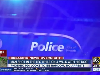 PD: Man walking dog shot by unknown suspect