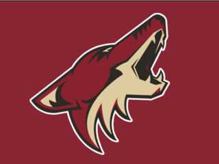 Coyotes preseason game canceled over bad ice