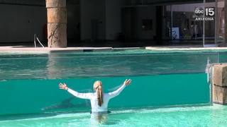 VIDEO: Training exercise at Dolphinaris Arizona