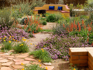 CONTEST: Win a beautiful Xeriscape landscape