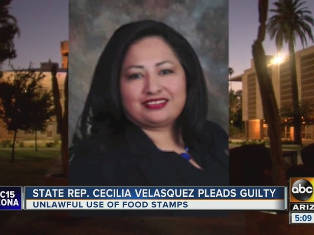 State lawmaker pleads guilty in food stamp case