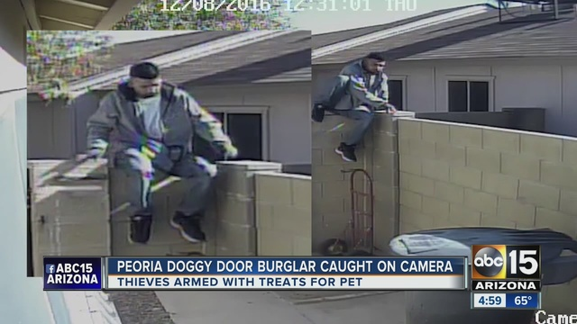 Watch Suspects Use Dog Door In Arizona Burglary Ktnv Las Vegas
