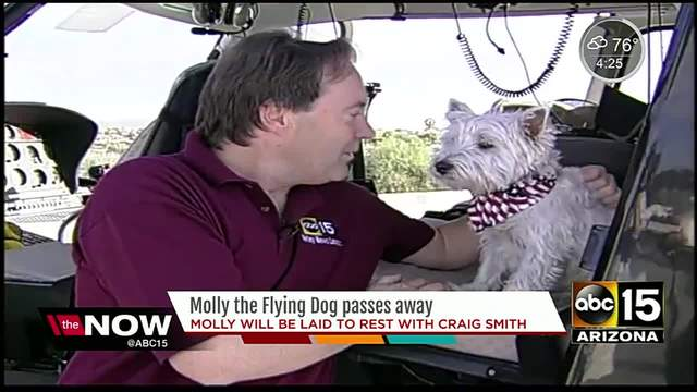 Molly the Flying Dog passes away