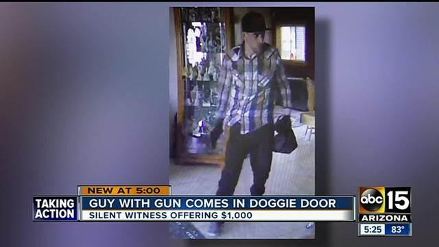 Phoenix Police looking for armed doggy-door burglar & Phoenix Police looking for armed doggy-door burglar - ABC15 Arizona Pezcame.Com