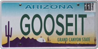 100 personalized license plates rejected in AZ