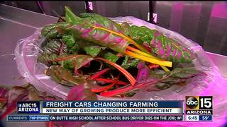 Farming with no soil, sunlight in freight cars?