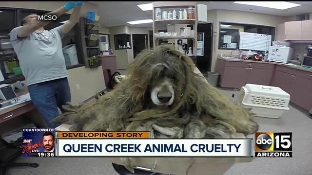 pinal county queen creek single women