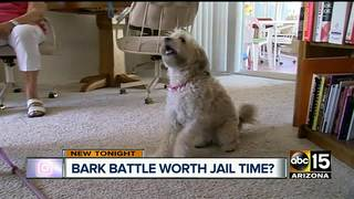 Dog dispute has 90-year-old woman facing jail