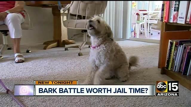 Dog dispute has 90-year-old woman facing jail
