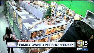 Custom Creatures Pet Shop fed up with theft