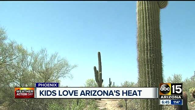 Phoenix flights canceled because of heat