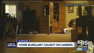 Several Surprise homes burglarized