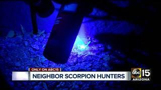Surprise neighbors hunts down scorpions