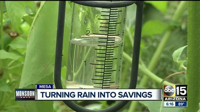 How you can cash in on the monsoon with rain water harvesting