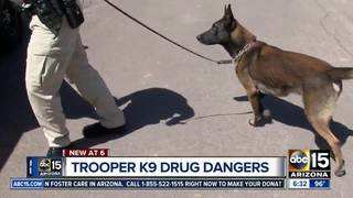 Narcotics raising danger for K9 officers