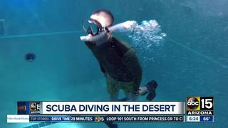Learn to scuba dive and get $100 off!