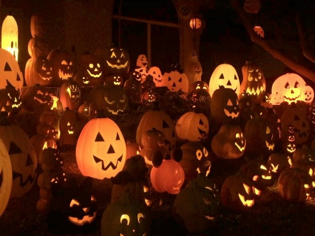 Phoenix homeowner creates stunning Halloween-themed light display ...